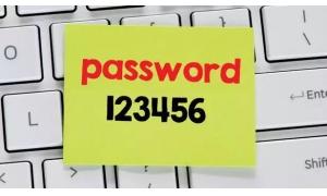 2018年百大最烂密码  123456五年蝉联