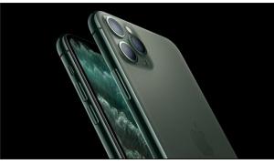 国内绿iPhone11抢断货 网友:当初是谁说不买的?