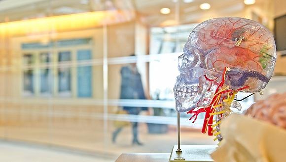 这家华人投资的脑机公司,能挑战马斯克所投企业吗?