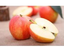蚂蚁庄园12月11日答案 吃苹果的时候不要啃苹果核