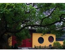 烟柳画桥写的是什么地方的景观 支付宝蚂蚁庄园