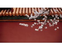 融合本土文化 Apple 三里屯推出「一座京城,万千