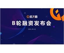 知识产权平台权大师获 1.1 亿元 B