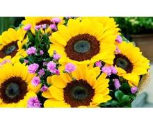为了延长鲜花的保鲜期,剪花枝时怎么做效果会